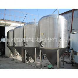 火龙果酒不锈钢发酵罐