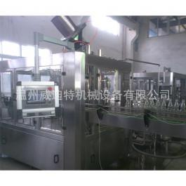 玻璃瓶果汁饮料生产设备